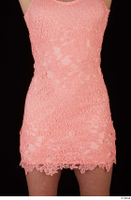 Chrissy Fox dress pink dress trunk upper body 0001.jpg